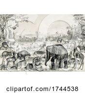 Landscape Of Animals