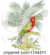 05/25/2021 - Scarlet Macaw Parrot