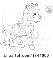 05/27/2021 - Spotted Pony And Butterfly