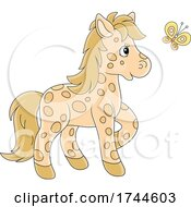 Spotted Pony And Butterfly