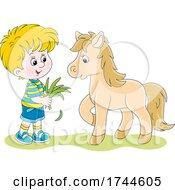 Little Boy Feeding His Pet Pony