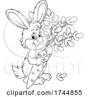 Black And White Cute Rabbit With A Carrot