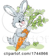 Cute Rabbit With A Carrot