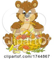 Bear WIth A Basket Of Mushrooms