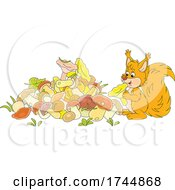 Squirrel Gathering Mushrooms