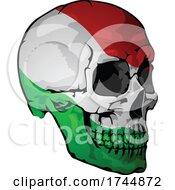 Italian Flag Skull