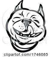 Laughing Boston Terrier Boston Bull Boston Bull Terrier Boxwood Or American Gentlemen With Tongue Out Front View Mascot Retro Style