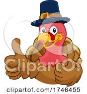 Turkey Pilgrim Hat Thanksgiving Cartoon Character