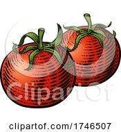 Tomatoes Vegetable Vintage Woodcut Illustration