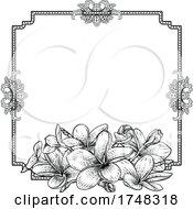Plumeria Tropical Flower Wedding Invite Background