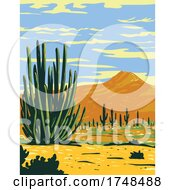 Stenocereus Thurberi Growing In Organ Pipe Cactus National Monument Located In Arizona United States And The Mexican State Of Sonora WPA Poster Art