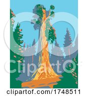 The General Grant Tree A Giant Sequoia In The General Grant Grove Section Of Kings Canyon National Park In California WPA Poster Art
