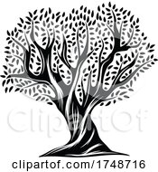 Black And White Olive Tree