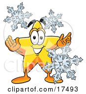 Star Mascot Cartoon Character With Three Snowflakes In Winter