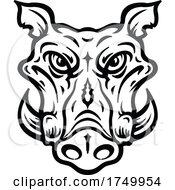 Black And White Boar Mascot
