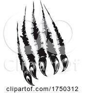 Poster, Art Print Of Talons