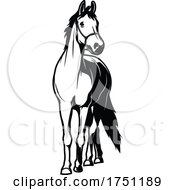 Poster, Art Print Of Horse