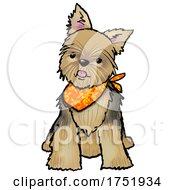 Cute Sitting Yorkshire Terrier Dog