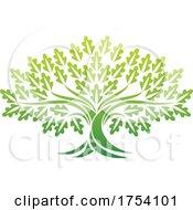 Oak Tree Icon Concept