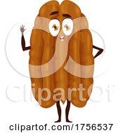 Walnut Character