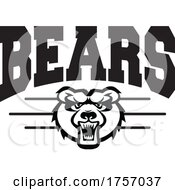 Bears Mascot Design With A Face Below Text