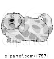 Clipart Illustration Of A Spotted Gray And Tan Dog With Long Shaggy Hair Looking At The Viewer With A Sad Or Confused Expression