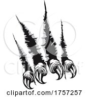 Talons Shredding