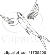 Sailfin Flying Fish Taking Off Continuous Line Drawing