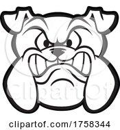 Black And White Growling Bulldog Mascot Head by Johnny Sajem