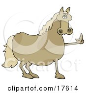 Pissed Brown Horse Flipping Off A Farmer After Not Being Fed His Oats