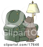Clipart Illustration Of A Bad Dog Looking Back Over His Shoulder While Peeing On A Chair In A Living Room by djart