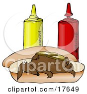 Clipart Illustration Of A Funny Wiener Dog Topped With Pickle Slices Lying On His Back On A Hot Dog Bun Beside Ketchup And Mustard Bottles