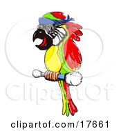 Clipart Illustration Of A Colorful Red Green And Yellow Macaw Parrot Wearing Glasses And Perching On A Stick