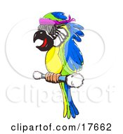 Clipart Illustration Of A Colorful Blue Green And Yellow Macaw Parrot Wearing Glasses And Perching On A Stick