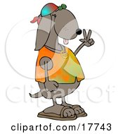 Cool Brown Hippie Dog In A Tye Die Shirt And Sandals And Flashing The Peace Sign Gesture Clipart Illustration by djart