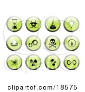 Set Of Green Buttons With Black And White Science Themed Web Design Icons Including An Hourglass Science Beaker Lightbulb Gears And Cogs The Jolly Roger Etc