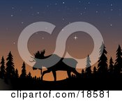 Poster, Art Print Of Silhouetted Moose With Large Antlers Walking Through The Wilderness Under A Starry Sky At Dusk