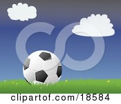 Black And White Soccer Ball Resting In Grass With Small Yellow Flowers On A Soccer Field