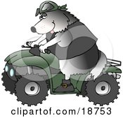 Clipart Illustration Of A Cool Border Collie Wearing A Vest And Driving A Green ATV