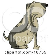 Clipart Illustration Of A Big Bloodhound Dog With A Marble Patterned Coat