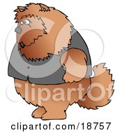Clipart Illustration Of A Big Furry Chow Chow Dog Wearing A Vest And Standing Up On Its Hind Legs Like A Human