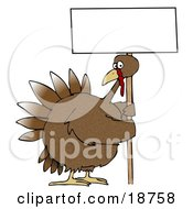 Clipart Illustration Of A Large Brown Turkey Bird On A Farm Picketing And Holding A Blank White Sign While On Strike On A Farm by Dennis Cox