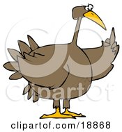 Clipart Illustration Of A Pissed Off Brown Turkey Bird Holding Up Its Middle Finger by Dennis Cox