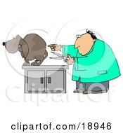 Nervous Brown Dog Cowering On An Exam Table As A White Male Vet Holds A Pair Of Scissors And Prepares To Neuter Him