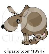 Clipart Illustration Of A Scared Dog At The Vets Office Cowering With His Tail Tucked Between His Legs Protecting His Testicles Before Getting Neutered