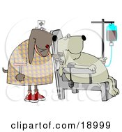 Clipart Illustration Of A Male Bloodhounds Seated In A Chair Donating Blood While A Nurse Stands By
