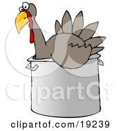 Clipart Illustration Of A Confused Live Turkey Bird In A Big Pot Being Prepared For Thanksgiving Dinner by Dennis Cox