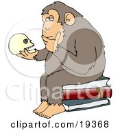 Clipart Illustration Of A Wise Monkey Holding And Gazing At A Human Skull Pondering His Own Existance A Parody Of Hugo Rheinholds Philosophizing Ape Sculpture That Was Created In 1892 by Dennis Cox
