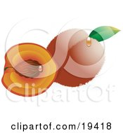 Clipart Illustration Of A Whole Fuzzy Peach With A Green Leaf Beside A Cut Peach With The Pit On The Inside