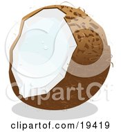 Clipart Illustration Of A Cracked Open Coconut Fruit Dripping White Milk From The Inside